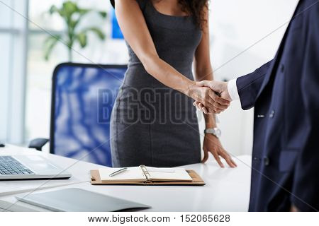 Cropped image of business lady shaking hands of male client