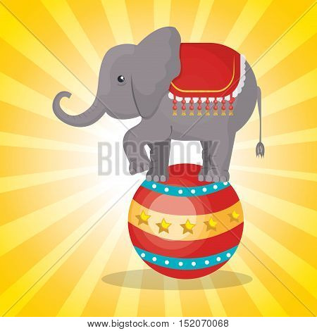 circus elephant festival show over yellow background. vector illustration