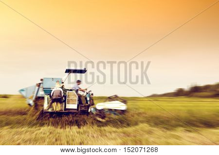 Under the evening sky rice harvester is working.