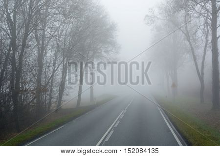 Asphalt road in the morning fog. Autumn scenery