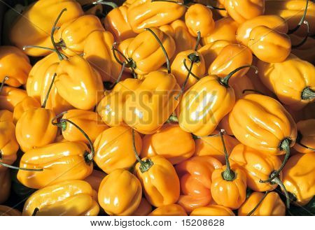 An image of a nice yellow peperoni background