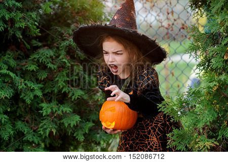 Halloween. Little girl portrays the evil enchantress. She is wearing a dark dress and a hat. In the hands of the girl Jack-o-lantern. She tries to make an frightening look. Children like this day