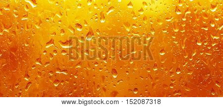 Rainy wet red orange fall eco seasonal  natural background with water drops