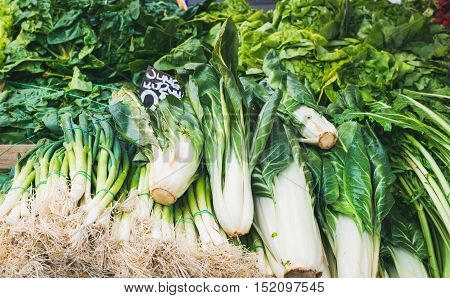 Various fresh green vegetables and herbs on market stall with price label in German at food market in Vienna