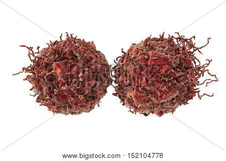 Prostate cancer cells isolated on white background, 3D illustration