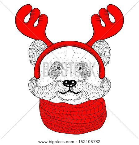 Sketch panda face with mustache in a reindeer antlers with knitted scarf. Hand drawn doodle vector illustration for Christmas greeting cards, posters.