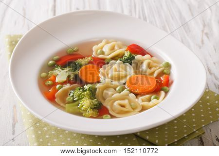 Italian Tortellini Soup With Broccoli, Peas, Carrot And Pepper Close-up. Horizontal