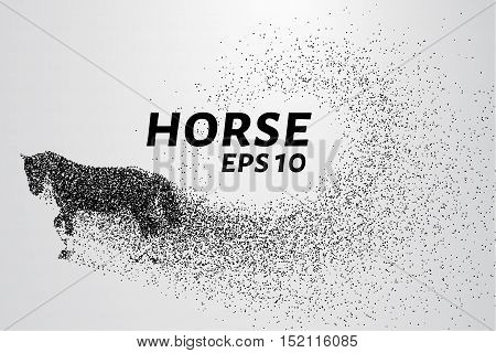 Horse of the particles. The horse breaks down into small molecules. Vector illustration