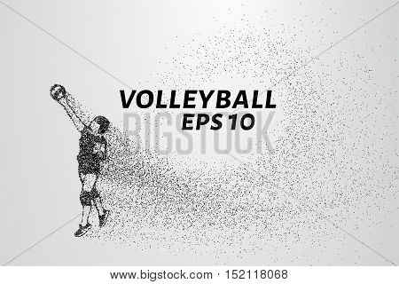 A volley of particles. Volleyball consists of small circles. Vector illustration