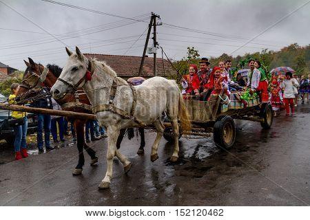 Village Bobovysche (Mukachevo district Transcarpathian region Ukraine) - 2016 October 16: Locals in Hutsul national costumes with baskets of grapes go to etnofestyval