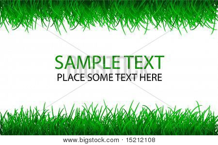 vector green grass background