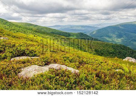 Stones And Boulders In Carpathian Mountain Range