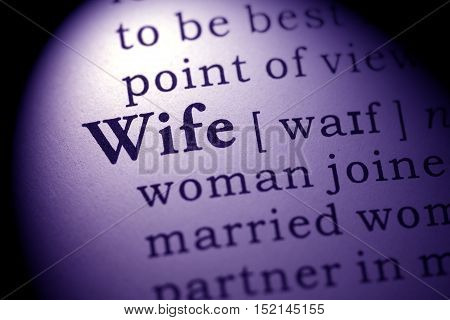 Fake Dictionary Dictionary definition of the word wife.