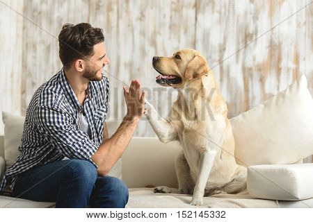 high five human, dog giving a paw to a handsome man in the house