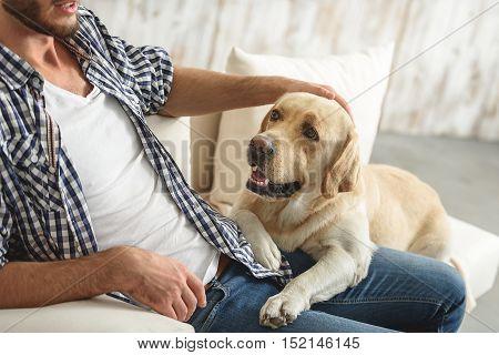 labrador with a man on a sofa resting