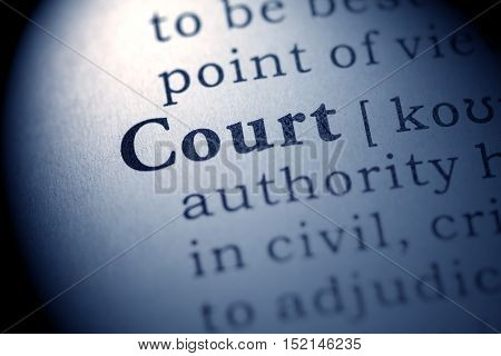 Fake Dictionary definition of the word court.
