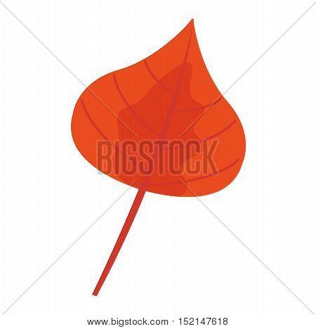 autumn leaf on white background. Autumn leaf autumn season and nature color plant foliage. Yellow autumn leaf bright decoration and design natural season colorful flat leaf.