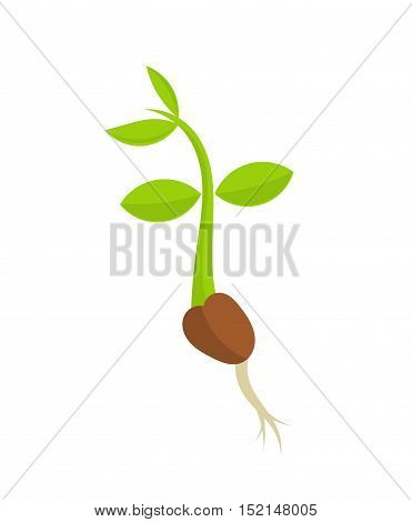 Little plant seedling germination isolated icon illustration