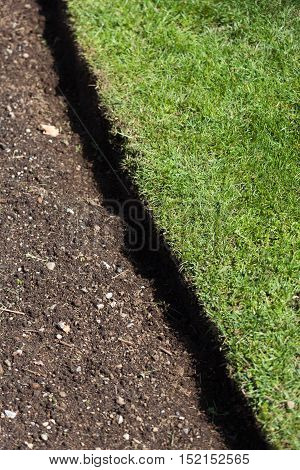 green grass and soil spring gardening background