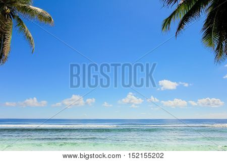 Under Trees Idyllic Coast