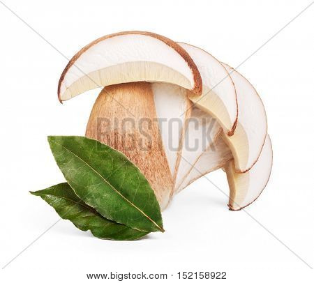 Boletus edulis with bay leaf isolated on white background