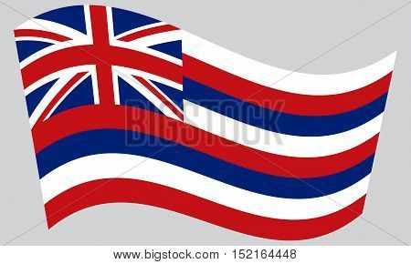 Hawaiian official flag symbol. American patriotic element. USA banner. United States of America background. Flag of the US state of Hawaii waving on gray background vector