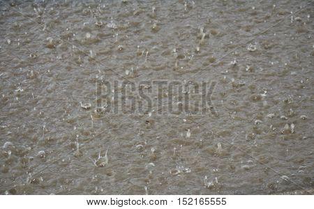 hard raining drop in flooding on street