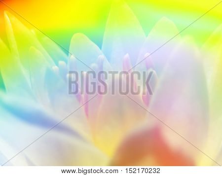 An abstract background of a flower with a pattern of rainbow collors