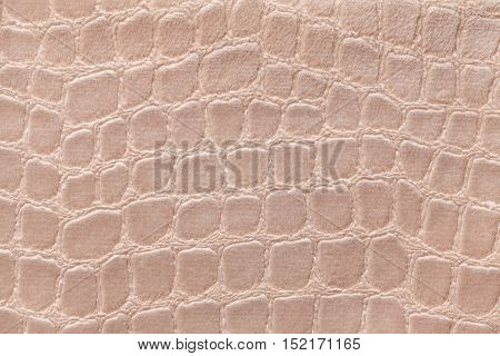 Light brown background from a soft upholstery textile material closeup. Fabric with pattern imitating crocodile skin. Textured backdrop.