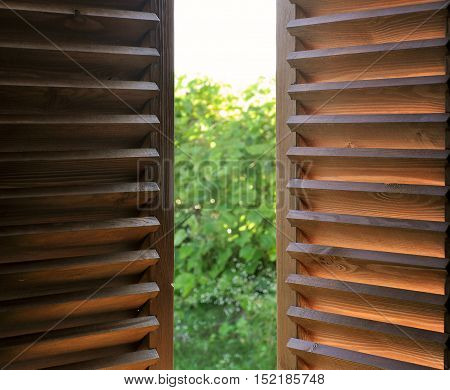 Semi-open dark wooden shutters close-up and view of the garden.