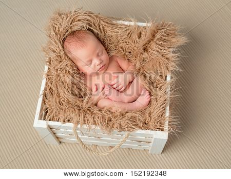 lovely bare sleeping newborn baby in wooden box with fluffy blanket