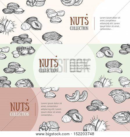 Nuts Package Design Banner Horizontal Set. Hand Draw Sketch. Vector illustration