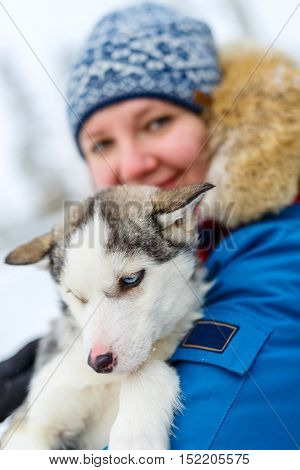 Woman holding a husky puppy in Lapland Finland