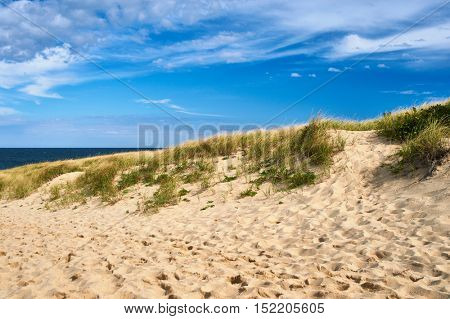 Landscape with sand dunes at Cape Cod, Massachusetts, USA.