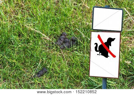 Dog feces on a meadow next to a sign with Symbol