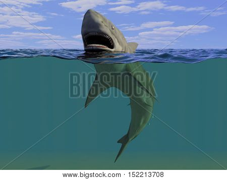 The basking shark under water.,3d render