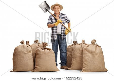 Full length portrait of a mature farmer holding a shovel and standing between burlap sacks isolated on white background