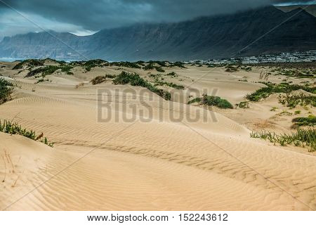 golden sand of Lanzarote coastal dune with dark mountains on the background, Canary Island, Spain