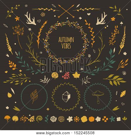 big set with rustic floral elements, vector flowers, leaves, wreaths, berries, autumn collection of decorative floral vectors