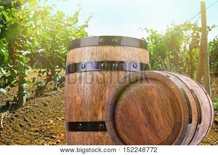 Wine with barrel on vineyard