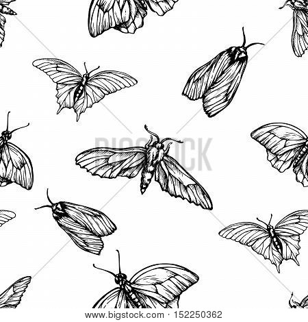 Vector seamless pattern with butterflies. Stylish graphic texture. Monochrome repeating print. Black and white engraving hand-drawn vector moths.