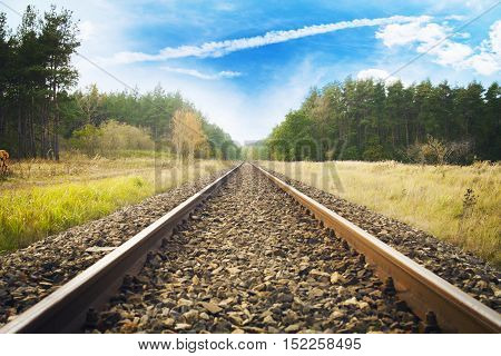 Railroad from the perspective toward the forest