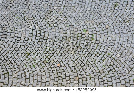 Paving stone surface with plants. Old cobblestone road with circular pattern. Top view.