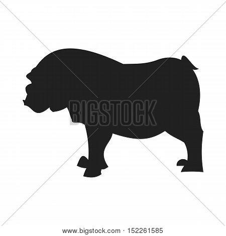 Bulldog black silhouette. Domestic creature dog isolated on white background. Vector illustration