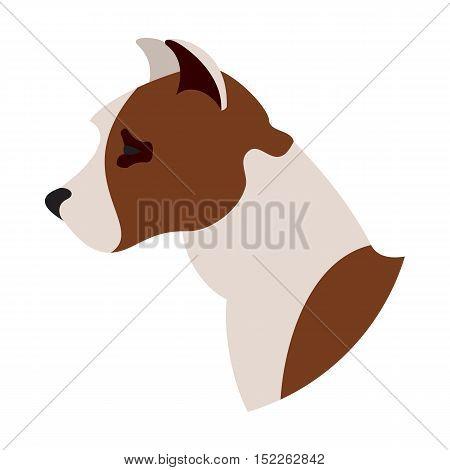 Dog head american pitt bull terrier. Domestic mammal purebred, vector illustration