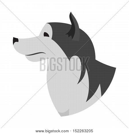 Dog head alaskan malamute. Companion creature mammal, domestic doggy, vector illustration