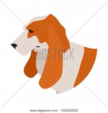 Dog head basset hound. Pet domestic playful, young mammal, vector illustration