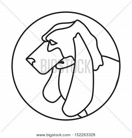Line head basset dog in round. Domestic purebred young animal. Vector illustration