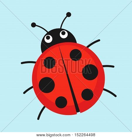 Cartoon ladybug vector illustration. Cute red ladybug isolated in a flat style. Funny insect or bug.