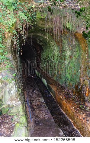 Detail on an old sewage tunnel entrance. Walls are covered with fluids plants and moss